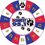 Cat Country 95.1 Radio custom prize wheel